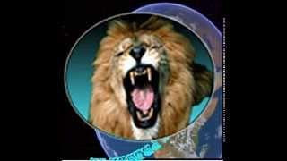 effetti sonori ruggito leone da