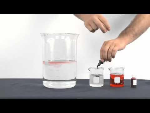 Rencontre eau douce et eau salee