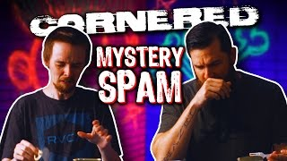MYSTERY SPAM | Cornered