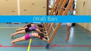 (Wall) Bars » Basics, Drills, Shaping & Strengthening