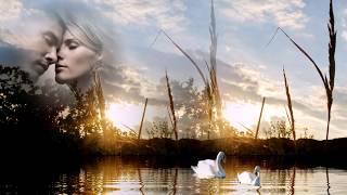 Очень трогательная песня о любви     Максим Куст – Тебя со мною нет