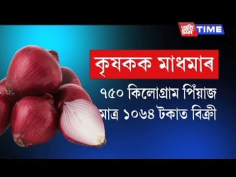 Farmer earns only Rs. 1064 by selling 750 kg Onions and Sends to PM's Fund