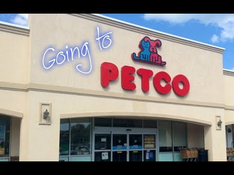 Going To Petco On Black Friday (Vlog)