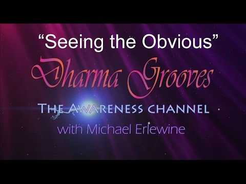 Dharma Grooves: Seeing the Obvious (Compassion)