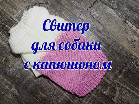 Связать свитер для чихуахуа крючком с капюшоном