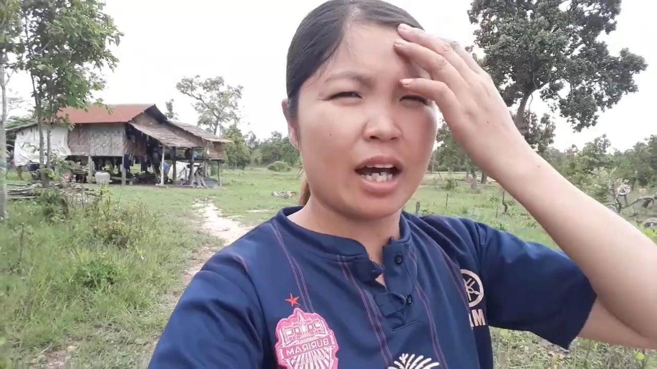 #พาดูสวนแตงไทยที่พ่อปลูกไว้/ພາເບີ່ງສວ່ນຫມາກແຕງທີ່ພໍ່ປູກໄວ້