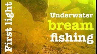 Bream fishing first light - Underwater feeder fishing - Breamtime S3 E9
