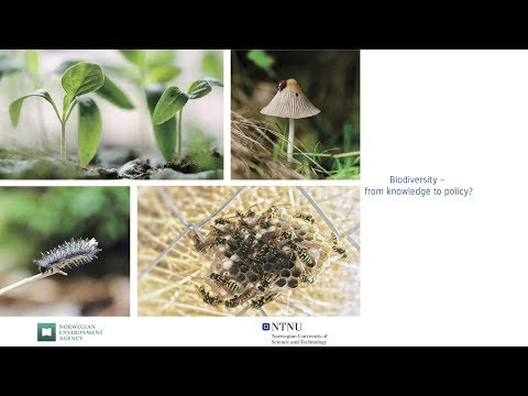 Biodiversity – from knowledge to policy?