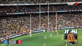 Round 18 AFL - Hawthorn v Richmond Highlights