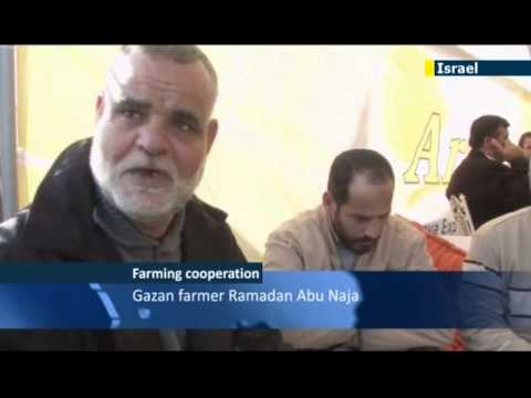 Israeli farmers aid Gaza counterparts: Palestinian farmers gain from Israeli knowhow