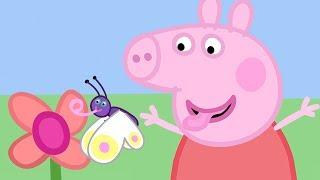 Peppa Pig in Hindi - Mendhak, Keede aur Titli - हिंदी Kahaniya - Hindi Cartoons for Kids