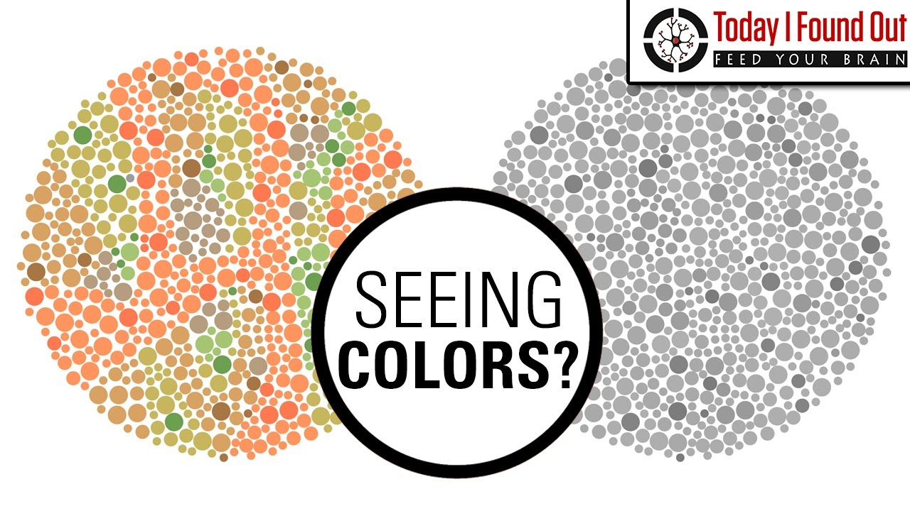 Can Color Blind People See More Colors When They Take Hallucinogenic ...