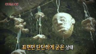 [서프라이즈] 모든 것을 돌로 만들어 버리는 저주 받은 동굴!