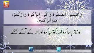 Surat - Al Baqarah - Ayat - 43 - Surah Al Baqarah