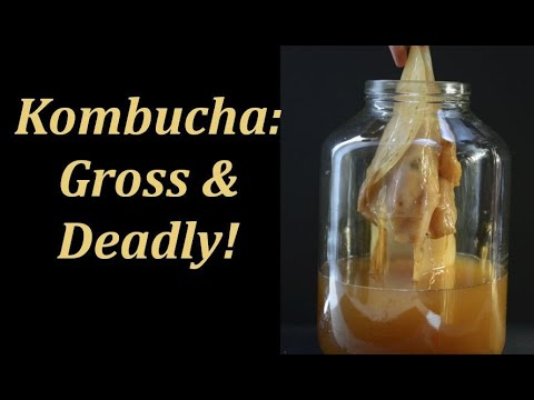 Health Warning! The Top 10 Negative Side Effects Of Kombucha - Also known as BEER POP!