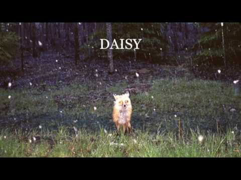 Download Youtube: Brand New- Daisy (Full Album)