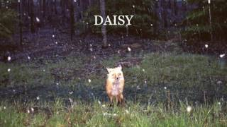 Watch Brand New Daisy video