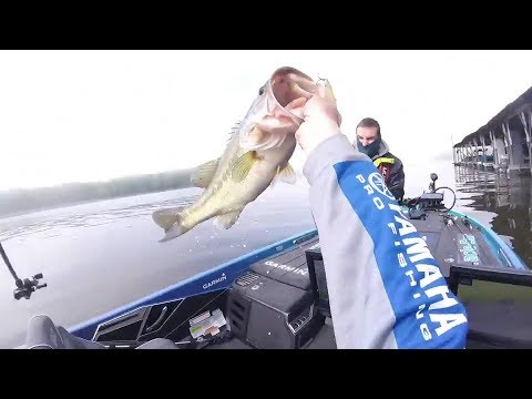 Alton Jones Jr. catches a 7-pounder on Kentucky Lake