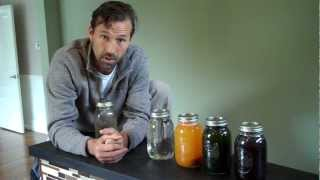 LIFE CHANGING HERBAL TONICS TO CLEANSE AND HEAL THE BODY