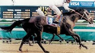 Top 10 Fastest Horses of the Kentucky Derby