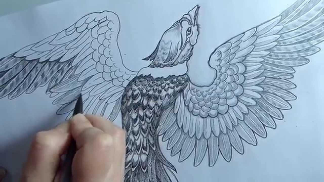 Dessin Phoenix Pour Le Tatouage Du Dos D Alessandro By Syltattoo