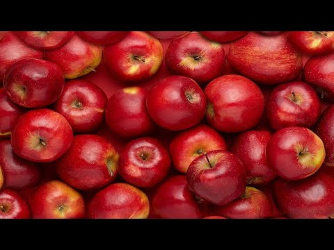 15 Reasons Why Apples are Incredibly Good for Your Health | Health And Nutrition