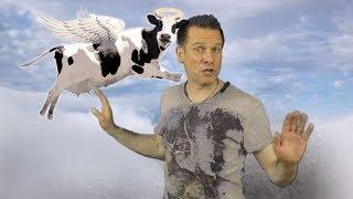 Wenn Kühe fliegen - Alpenraudis (offizielles Musikvideo)