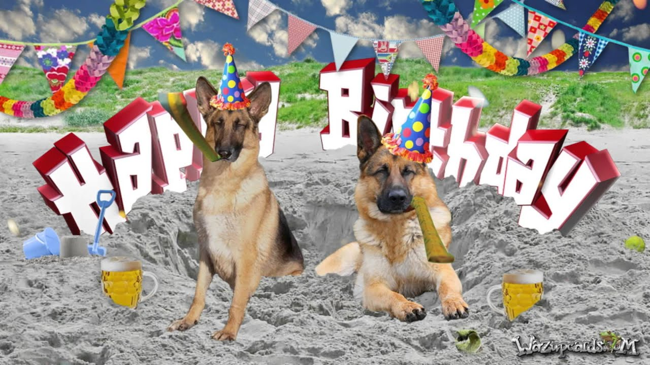 Image Gallery happy birthday german shepherd
