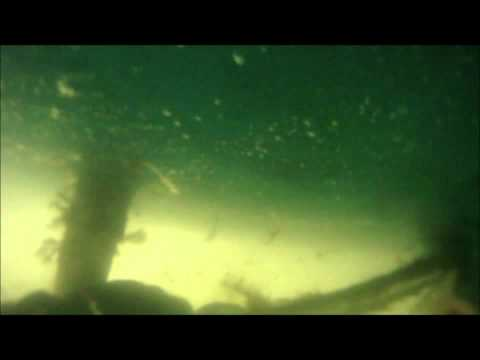 FastBottoms Hull Cleaning Hunter 33 Ballena ver.2 12.11.10.wmv