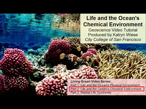 Life and the Ocean's Chemical Environment
