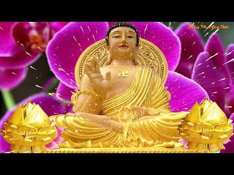 Ngày 14,15 Rằm Tháng 8 Âm Nghe Kinh Phật Này Phật Tổ Phù Hộ Mọi Chuyện Suôn Sẻ