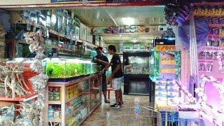 Kolathur market overview part - 1