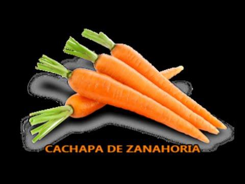 CACHAPA DE ZANAHORIA