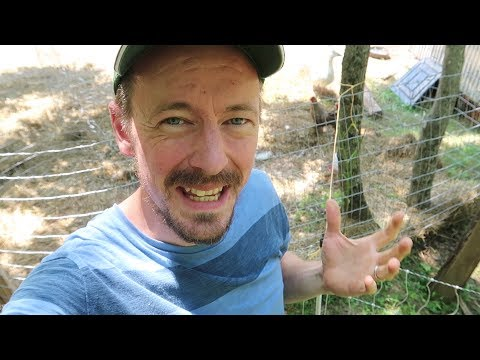 portable-electric-fences-and-their-uses-on-the-homestead!