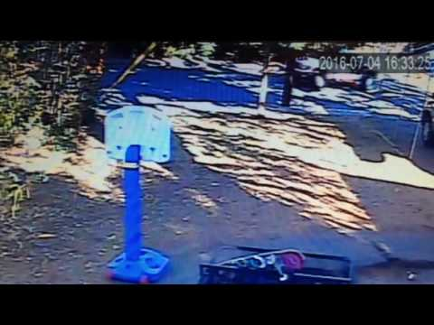 "Menlo Park CA ""Willows Neighborhood"" thieves on camera"