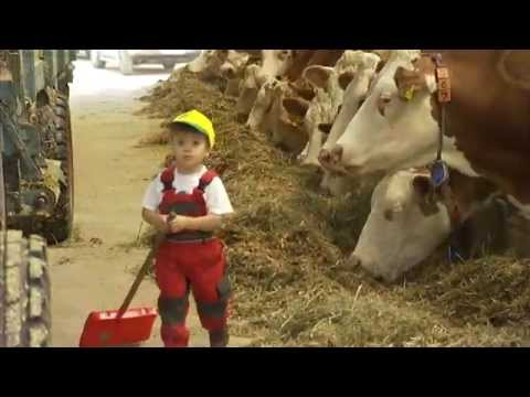 Die bayerischen Bauern