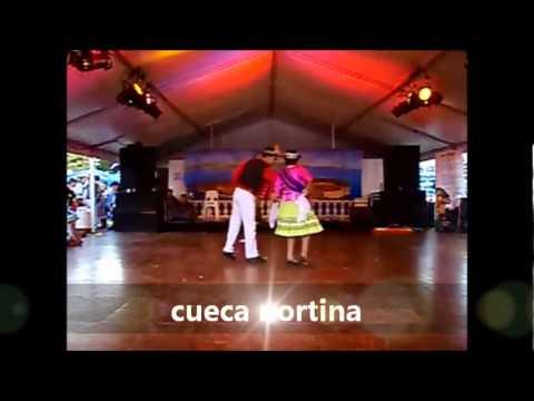 Bailes Zona Youtube