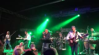 Video Tribute To The Cats Band / Be My Day download MP3, 3GP, MP4, WEBM, AVI, FLV Juni 2018