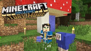 A GIFT FOR STAMPY - MY MINECRAFT STORYMODE HOUSE (EP.5)