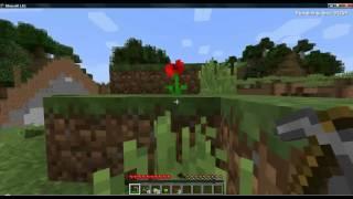 Minecraft on Dell Optiplex 755 SFF