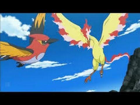 Pokemon XY - Moltres VS Talonflame - AMV