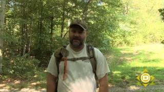 Survival Fitness Considerations