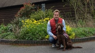 Ben Fogle's' Bbc Lifeline Appeal For Hearing Dogs For Deaf People - Bbc One