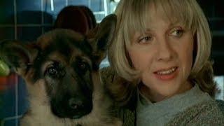 Елена Яковлева и ее кино-собаки