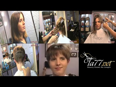 Free TA77.net video - Ariel SX part 2 - YouTube