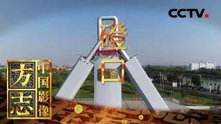 《中国影像方志》 第257集 内蒙古磴口篇 河套源头千年要塞乡味浓 防沙造林北疆粮仓翻绿浪 | CCTV科教