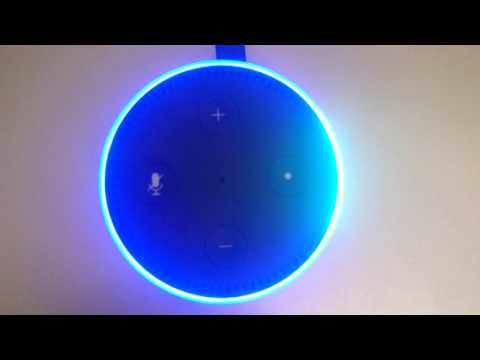 Amazon Echo: Shuffle song by the Rolling Stones