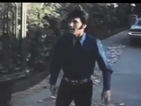 Elvis -  Do You Know Who I Am (with fan footage from Hillcrest)