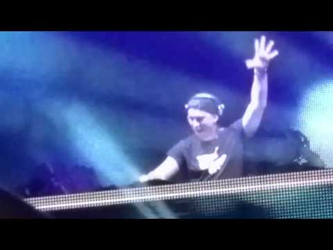 HARDWELL Live D Y Patil Stadium Mumbai Entrance (Best quality)