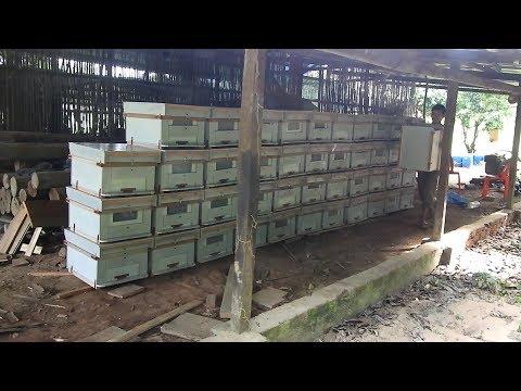Khmer beekeeping building beehive at beekeeper's workshop